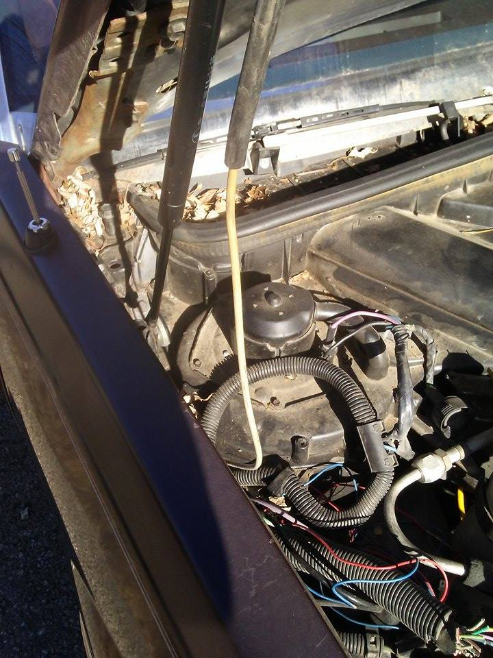 Wiring Harness Vac Hose Coolant Lines Routing Subaru Legacy Forums