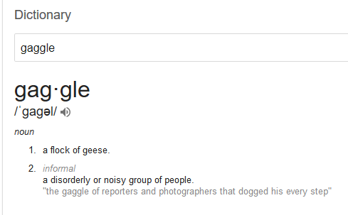 gaggle.PNG